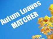 Autum Leaves Matcher